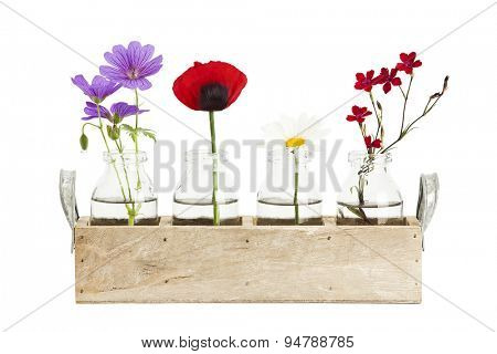 variety of small flowers in bottles in a wooden tray isolated on white background