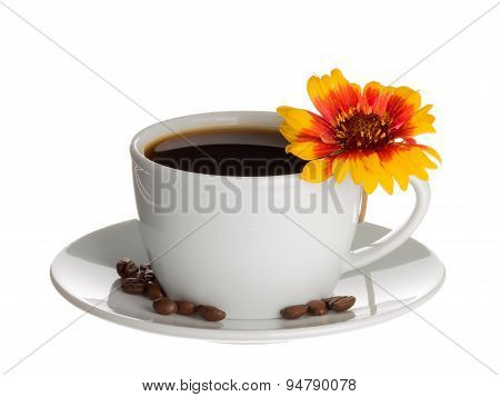Coffee Cup And Flower Gaillardia