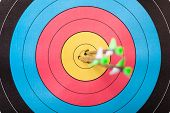 stock photo of archery  - Arrows in archery target - JPG