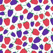 foto of blackberries  - raspberries and blackberries fruit summer seamless pattern eps10 - JPG