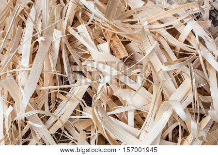 Wooden Shavings Background. Photo shows a pine wooden shavings background pattern.