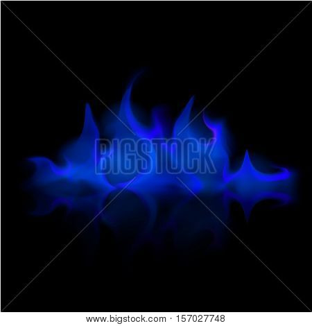 Vector Blue Fire Flame Bonfire  Isolated on Background