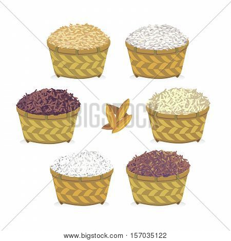 vector of rice in basket such as brown rice jasmine rice rice berries and paddy.