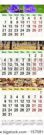 office calendar for three months August September and October 2017 with images of autumnal park amd yellow leaves. Calendars for using in office life