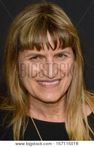 LOS ANGELES - NOV 14:  Catherine Hardwicke at the