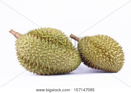 yellow durian  mon thong is king of fruits durian on white background healthy durian fruit food isolated