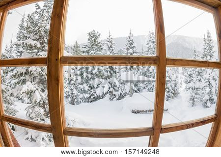 Snowy Forest Trees In The Snow Outside The Window With A Wooden Frame With The Distortion Of A Fish-