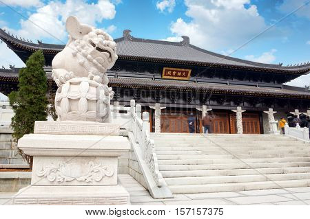 Stone lions in front of classical architecture