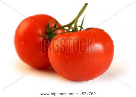 Two Vine Tomatoes