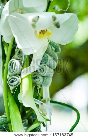 Hanging Bridal bouquet of beautiful flowers with a green background of a tree