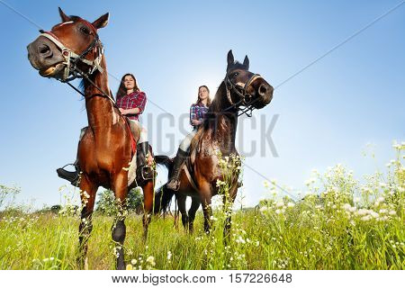 Bottom view portrait of two female equestrians with purebred horses at countryside