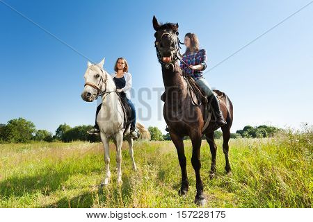 Outdoor portrait of two young beautiful women riding their purebred horses in a meadow
