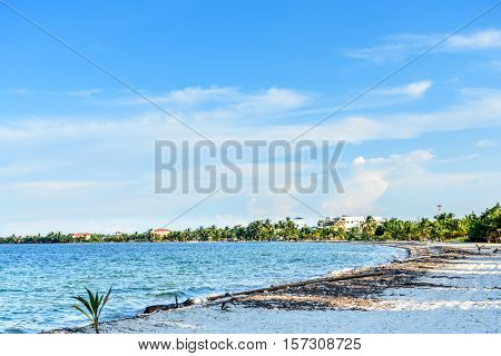 Caribbean beach in late afternoon light in Belize Central America