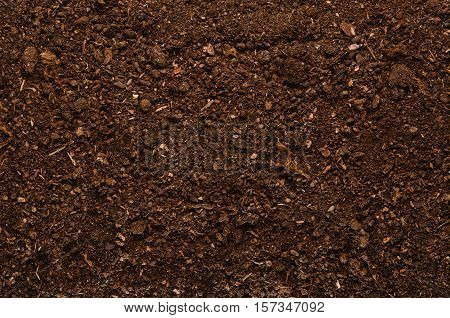 Fertile soil texture background seen from above, top view. Gardening or planting concept. Isolated on white