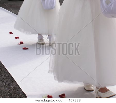 Flower Girls And Petals