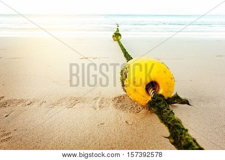 Seascape With Rope And Buoy In Seaweeds