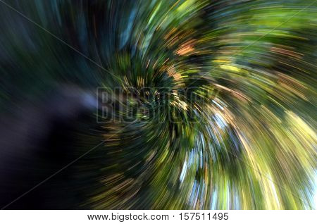 Zoom into a forest with high speed textured background. Abstract background zoom. Bright background conveying speed. Mysterious the mystic. Green of tree blurred background speed lens zoom effect.
