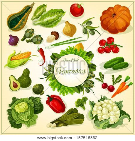 Fresh vegetable poster with tomato and pepper, carrot, broccoli, olive, onion, mushroom and chilli, cucumber and cabbage, lettuce, pumpkin and corn, radish and salads. Food design