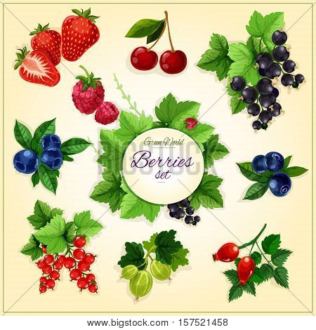 Berry and fruit cartoon poster with sweet strawberry, cherry, blueberry, raspberry, black and red currant, bilberry, gooseberry and briar berries. Food, juice, fruit dessert design