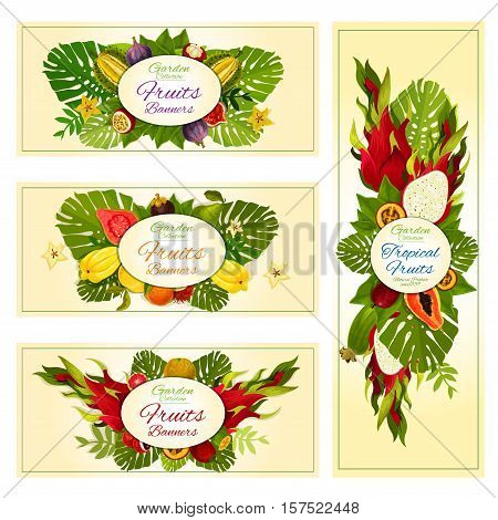 Tropical fruit banners with orange, exotic dragon fruit, feijoa, papaya, carambola and durian, passion fruit, guava, fig, lychee and mangosteen, tamarillo, rambutan and palm leaves