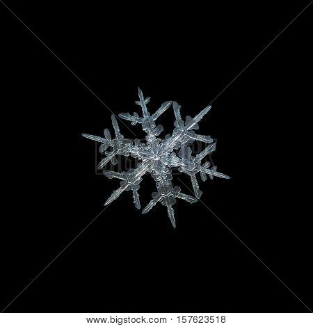 Snowflake isolated on black background. This is macro photo of real snow crystal: small stellar dendrite with bright center and ornate arms with side branches.