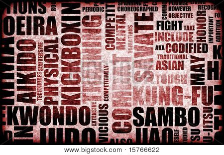 Sambo Martial Arts as a Fighting Style