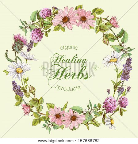 Vector round wild flowers and herbs frame. Design for herbal tea, natural cosmetics, honey, health care products, homeopathy, aromatherapy. With place for text