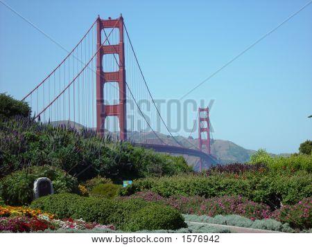 Golden Gate 1768