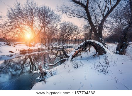 Christmas Background With Snowy Forest. Winter Landscape