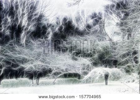 Trees Landscape Abstraction 3d Render