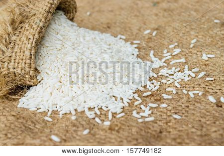 Glutinous rice in sack with hemp sacks background