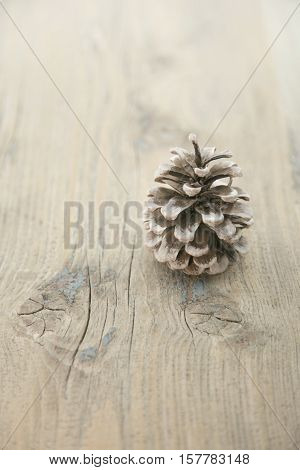 Pinecone On Rustic Wooden Background With Copy Space For Text. Holiday Background Or Greeting Card.