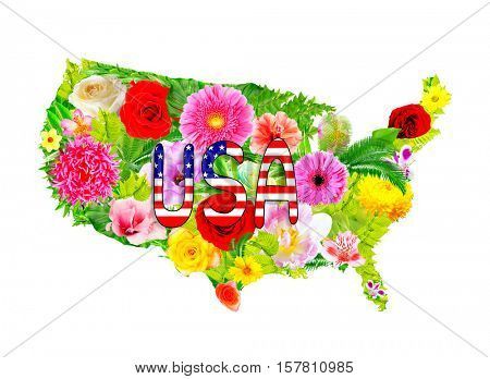 Floral design of USA map on white background