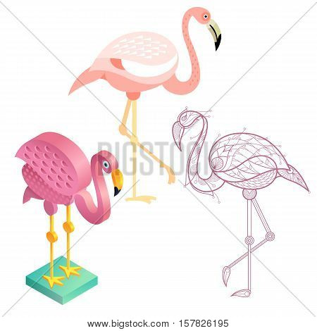 Birds flamingos. Flat icon template for adult coloring isometric view. Set of vector birds in different unusual style. Illustration collection of images birds isolated on white background.