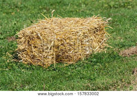 A small bales of straw on a green field.
