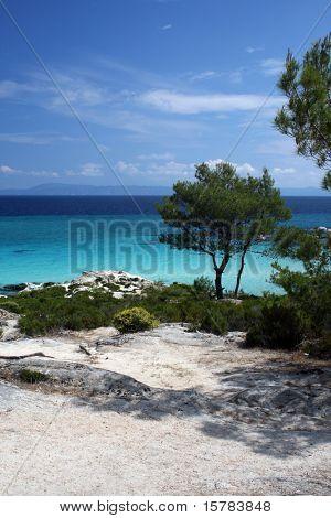Tropical scene of seashore