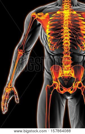 man's body under X-rays. bones are highlighted in red. 3D illustration.