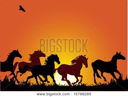 illustration with horse herd at red sunset