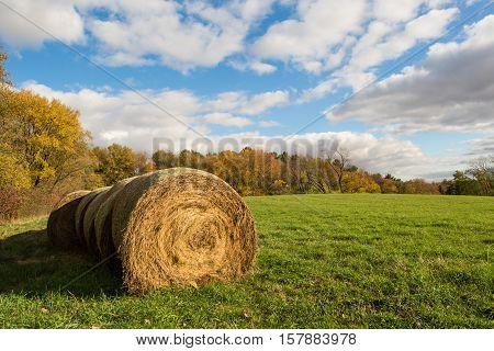 Hay field landscape taken in the fall.