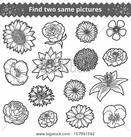 Find two the same pictures, education game for children. Colorless set of flowers