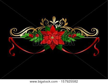 Christmas decoration with evergreen treess holly and poinsettia isolated on black with swirls