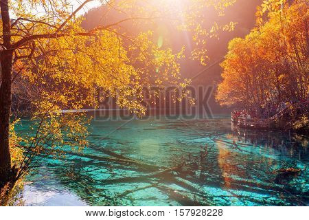 Amazing View Of The Five Flower Lake (multicolored Lake)