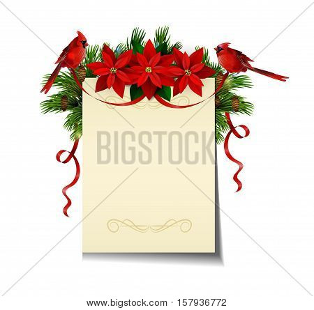 Christmas background with paper ribbon and lights isolated with free space with poinsettia and cardinal bird