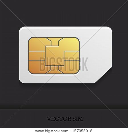 the vector image of a realistic sim card with the chip for cellular mobile communication