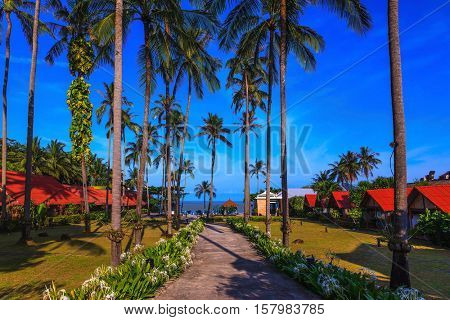 Popular resort on the island of Koh Samui. Walkway to the sea surrounded by palm trees. Rest of the Andaman Sea