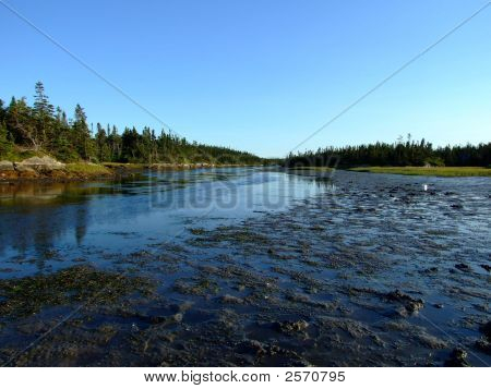 Coastal View Cape Lahave