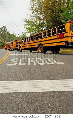 Ônibus escolares em linha