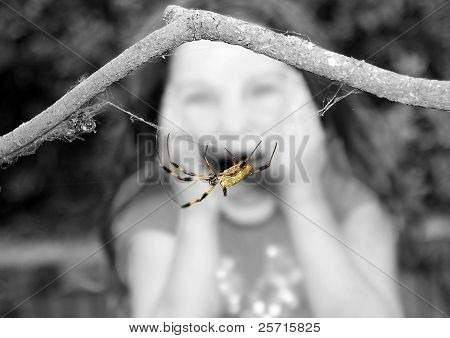 Young Girl Screaming at Sight of Huge Spider