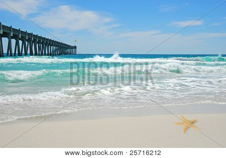 Pretty Ocean Waves with Pier in Distance and Starfish on Beach