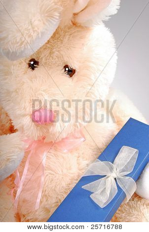 Bunny Holding gift Box